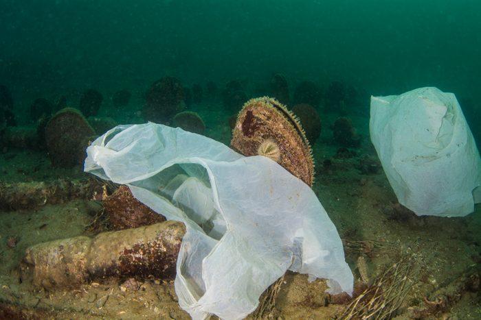 Buste di plastica sul fondale marino.