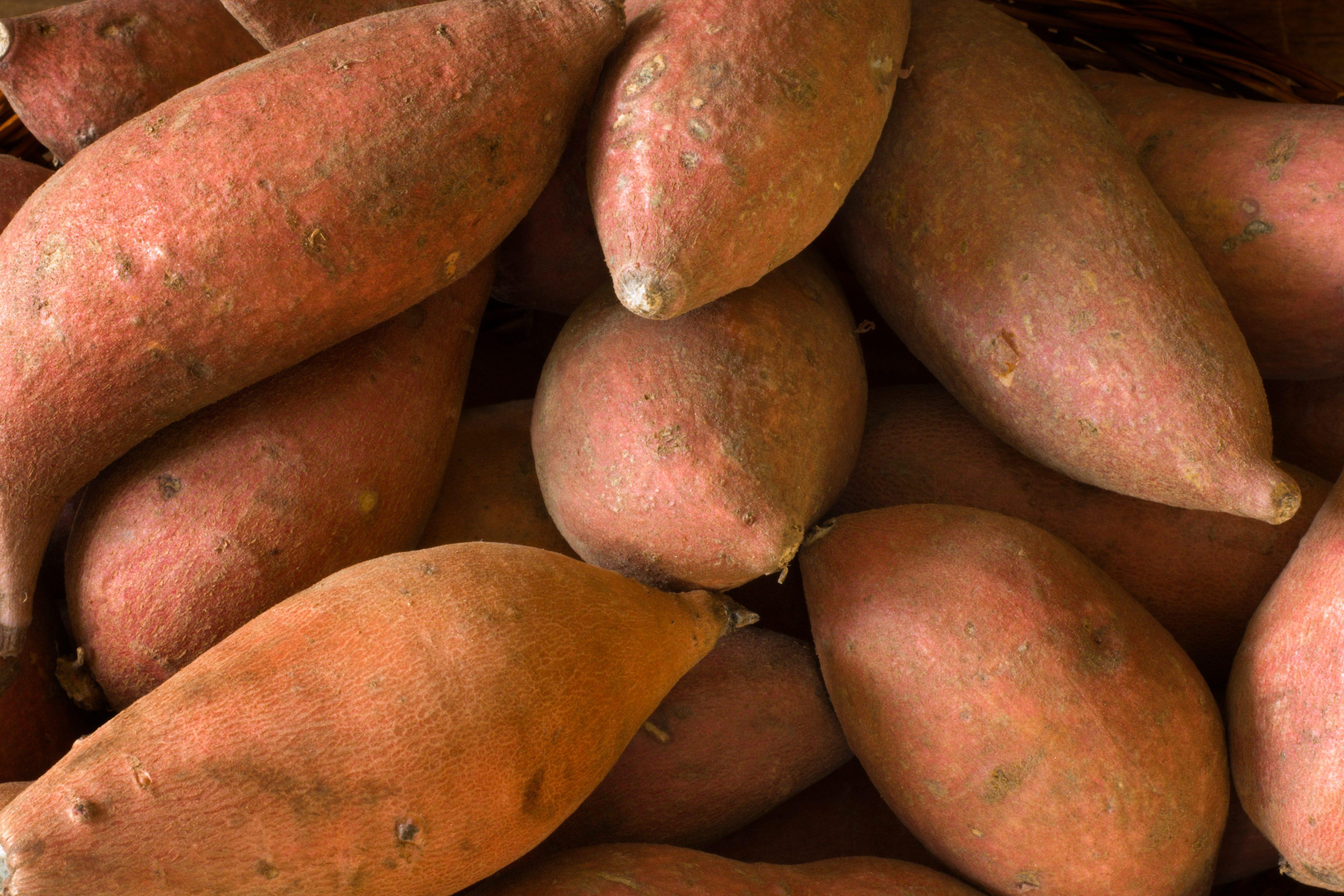 Raw Whole Sweet Potatoes Yams, Fresh Healthy Root Vegetable