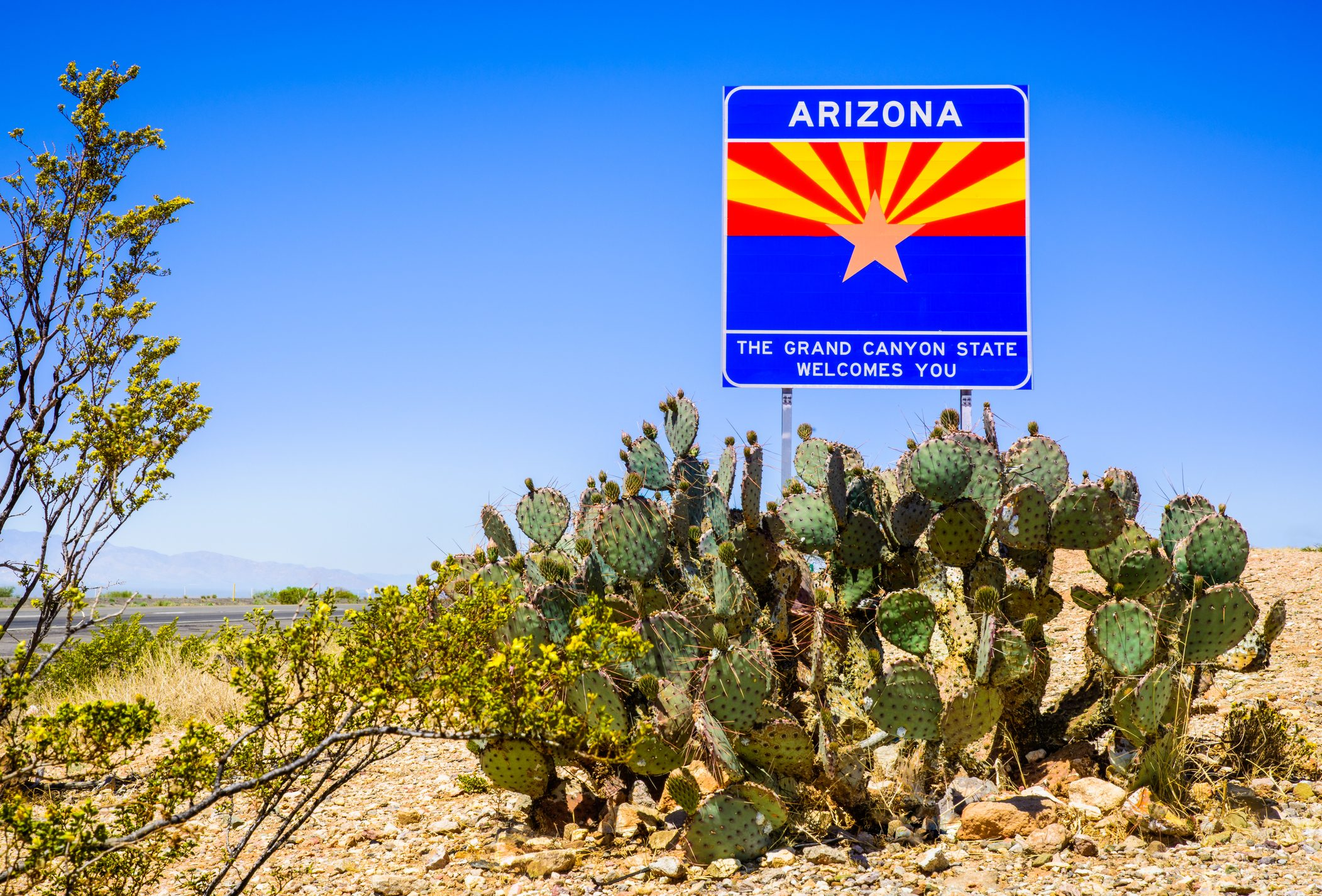Arizona State highway welcome sign with cactus, mountains, and sky
