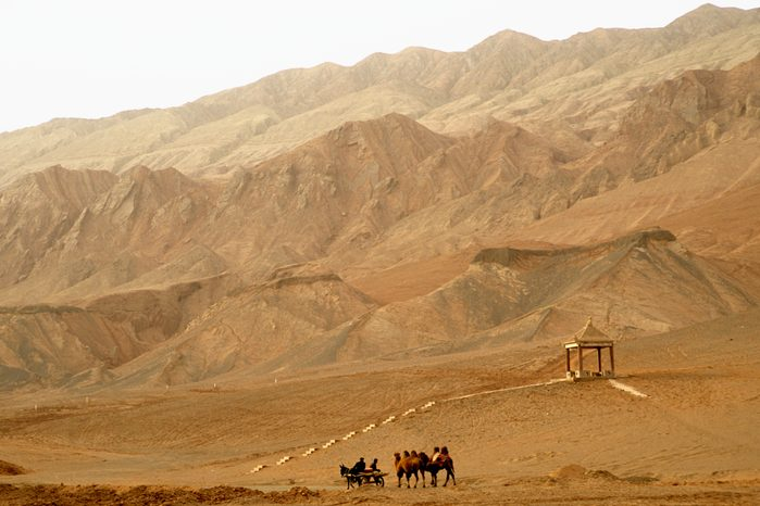 Cart and Camels in Desert
