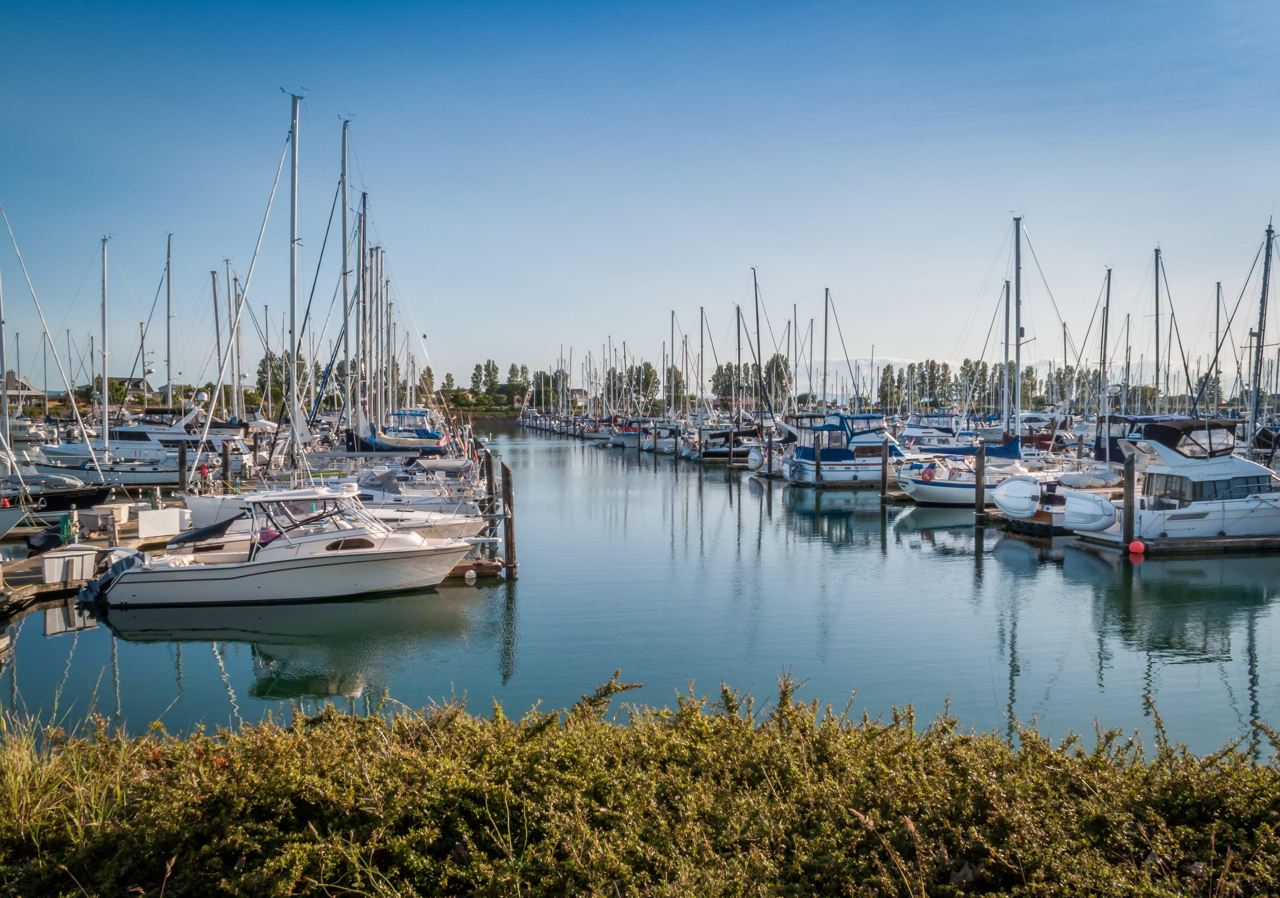 sail boats and yatchs anchored in marina