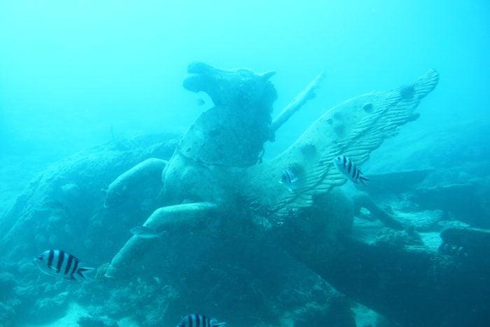 Fish Swimming By Statue In Sea