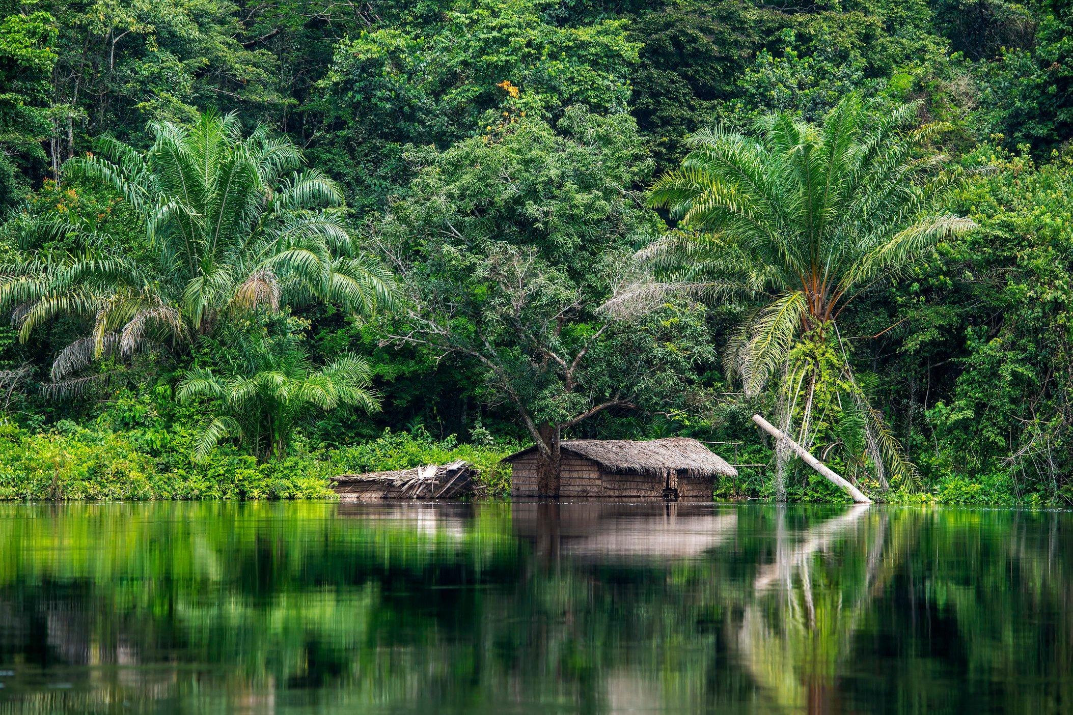 Hut at the shoreline of Congo River