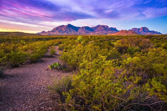First Light on Chisos Mountains Big Bend National Park