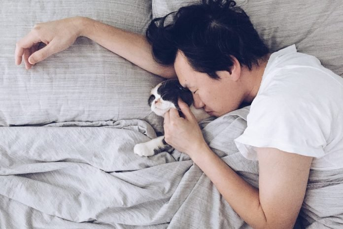 High Angle View Of Young Man With Kitten Sleeping On Bed At Home