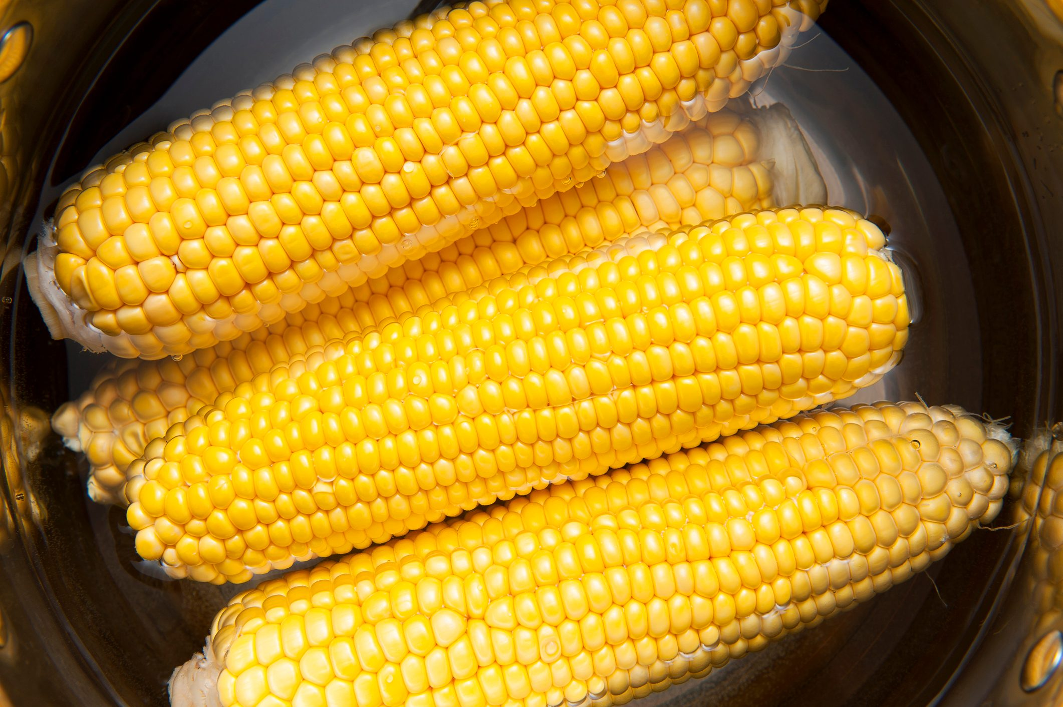 Corn cobs boiling in the water