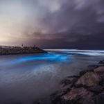 13 Beautiful Photos of Beaches That Naturally Glow