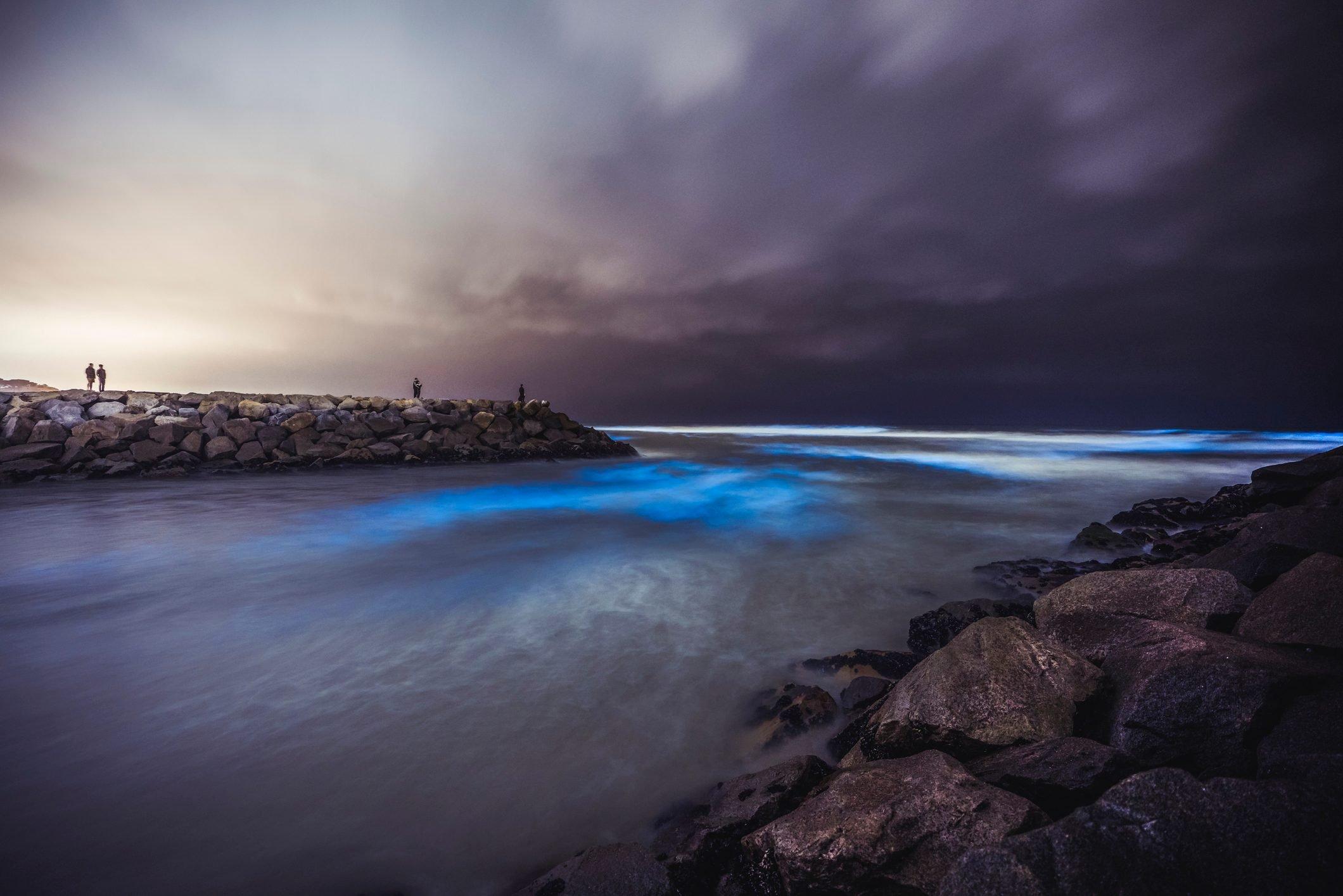 San Diego Red Tide