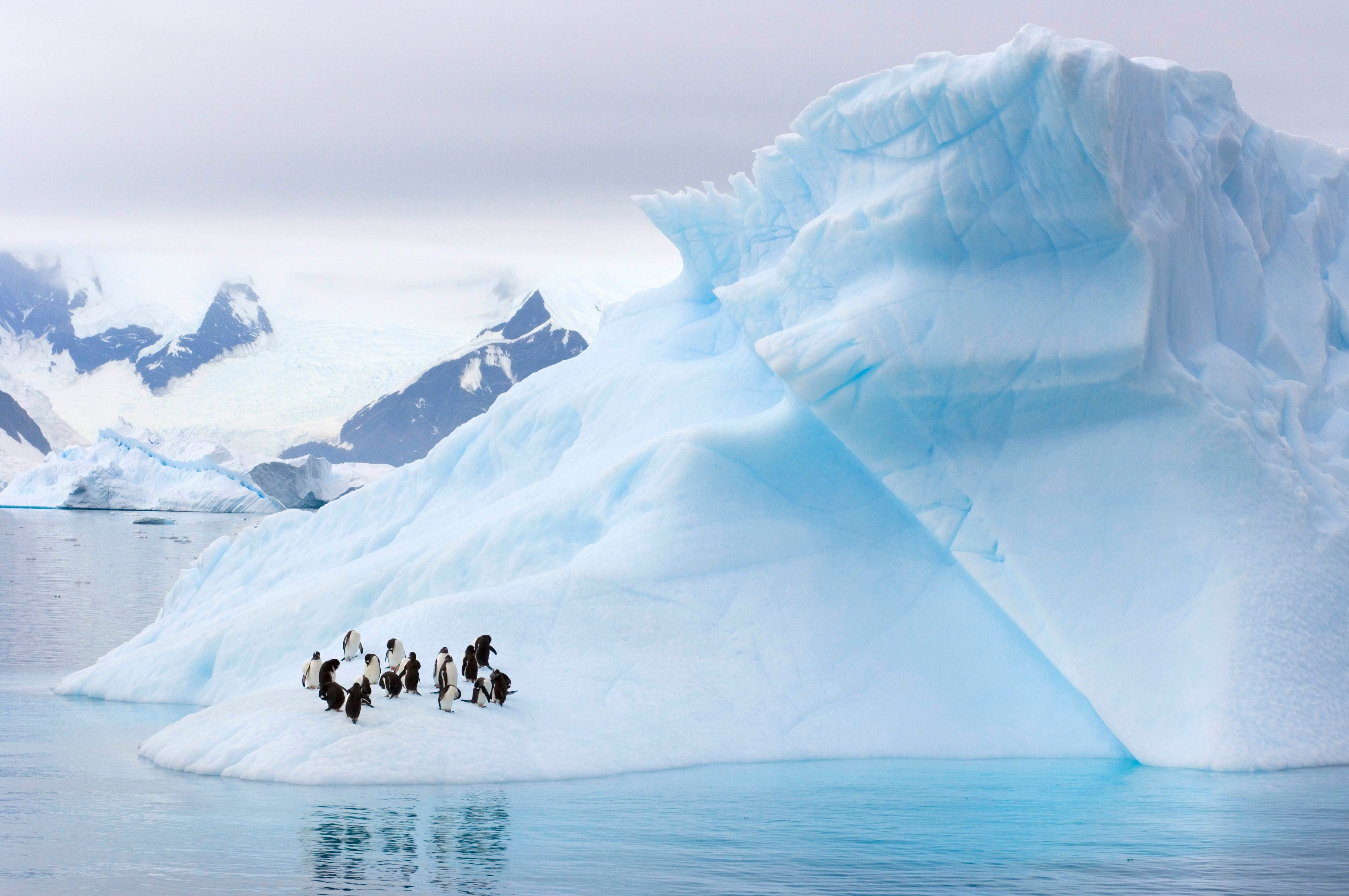 The Natural Sculptures Of Antarctic Icebergs