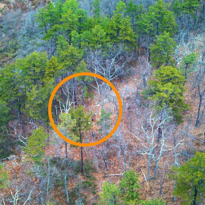 search-and-rescue drone image. bill's orange cap is visible and is highlighted by orange circle overlay.