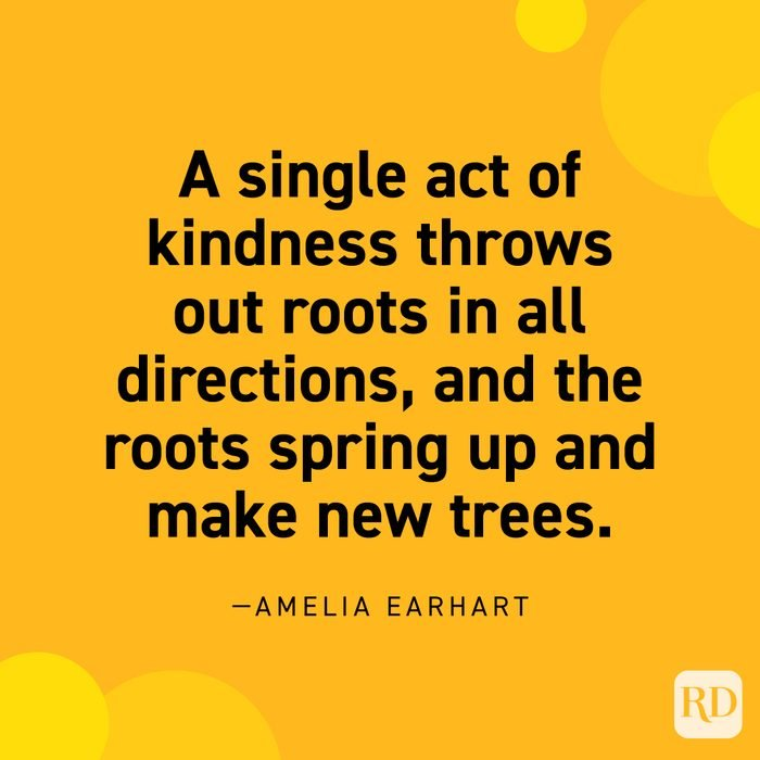 """""""A single act of kindness throws out roots in all directions, and the roots spring up and make new trees."""" —Amelia Earhart"""
