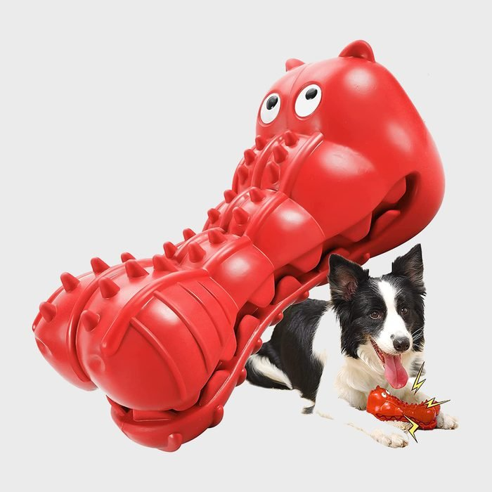 Rmolitty Squeaky Dog Toy