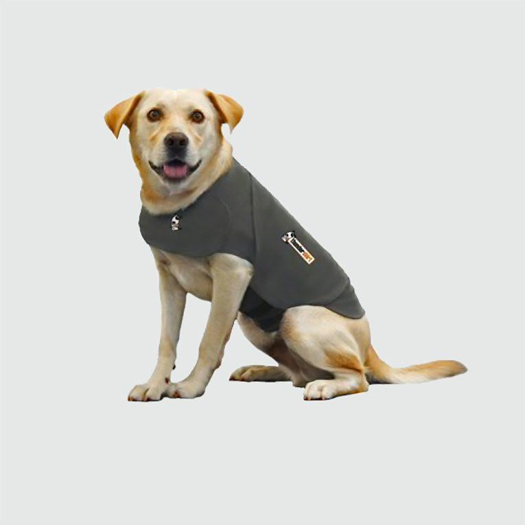 ThunderShirt dog anxiety