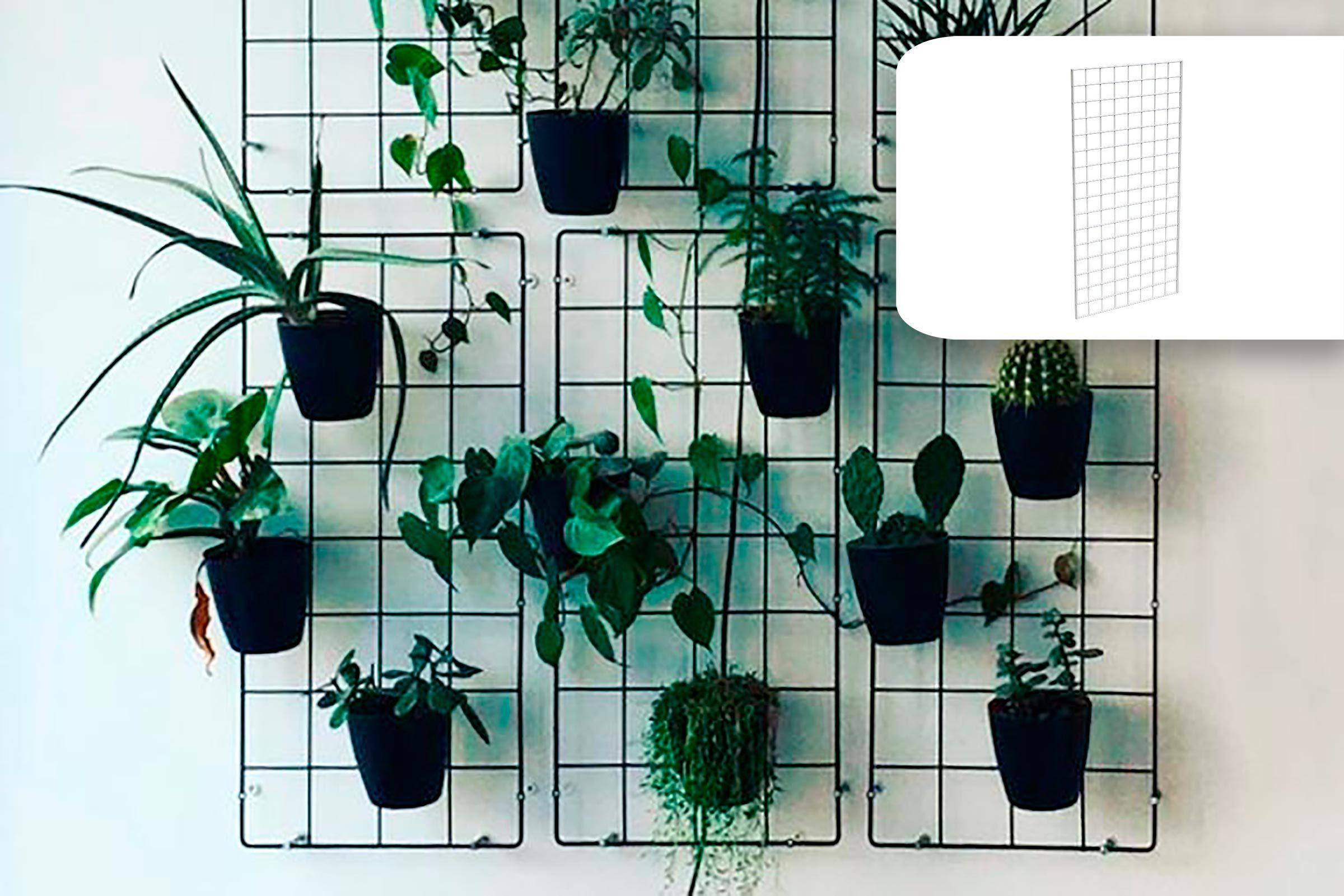 vertical indoor garden