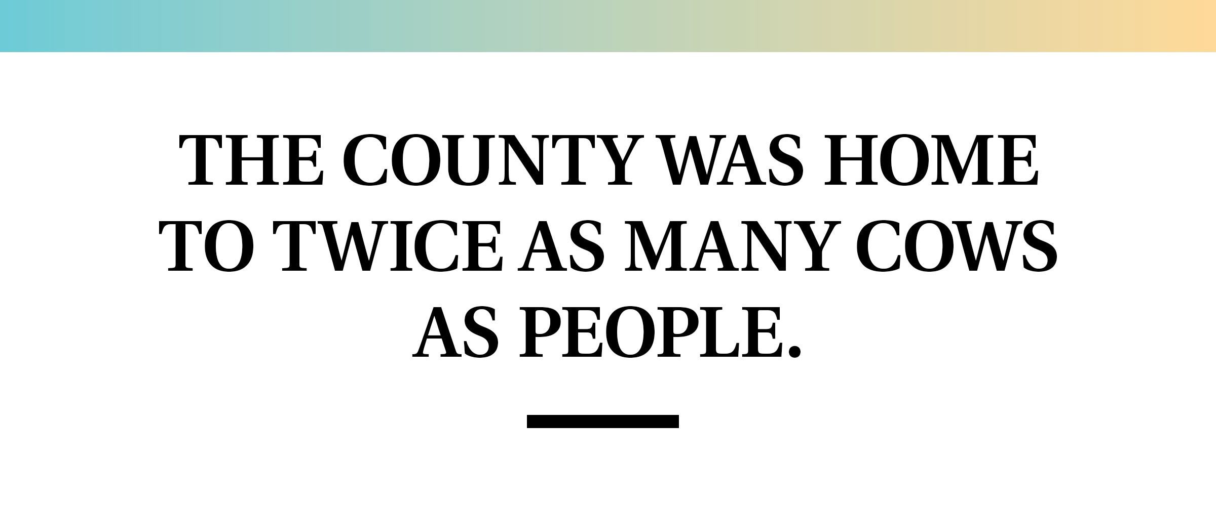 pull quote text. the county was home to twice as many cows as people.