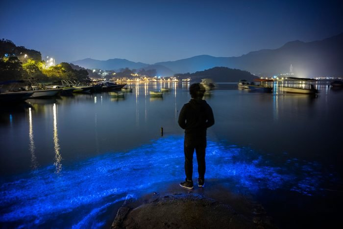 Blue Glow Appears On Hong Kong's Shores