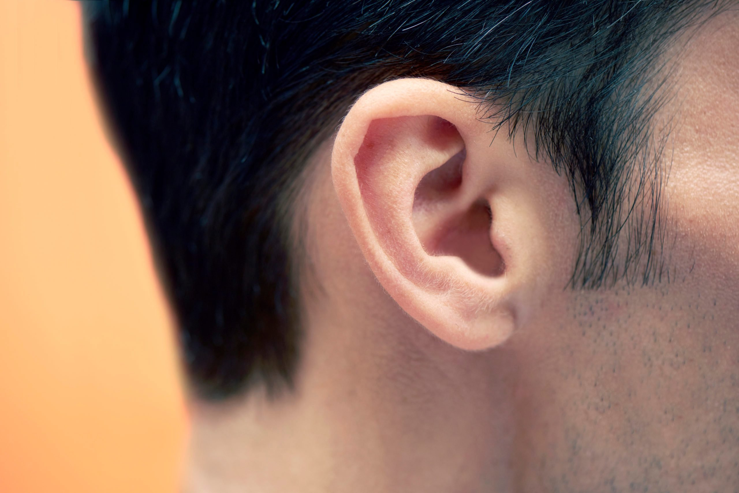 closeup of man's ear