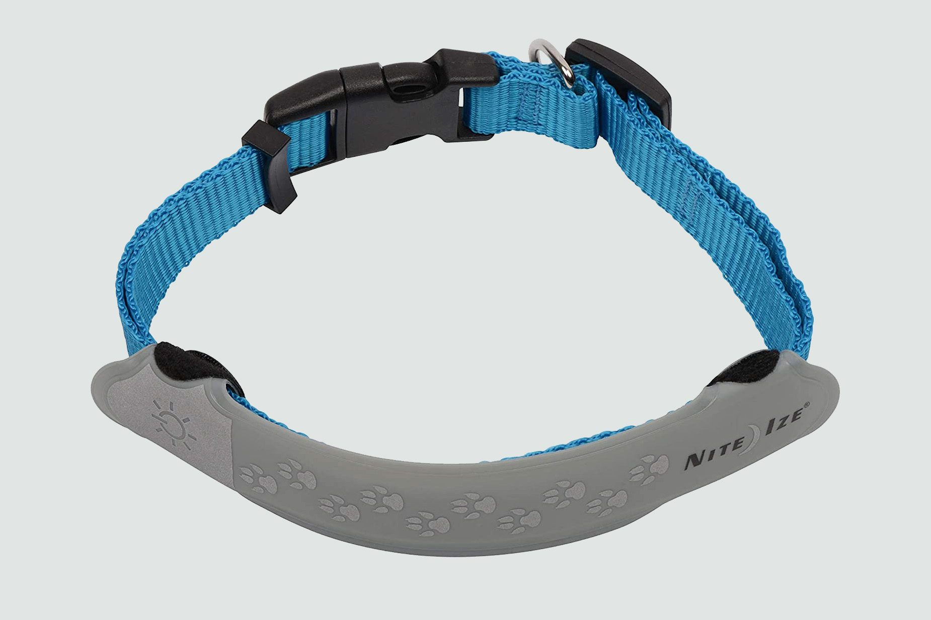 Glow-in-the-dark or reflective collars