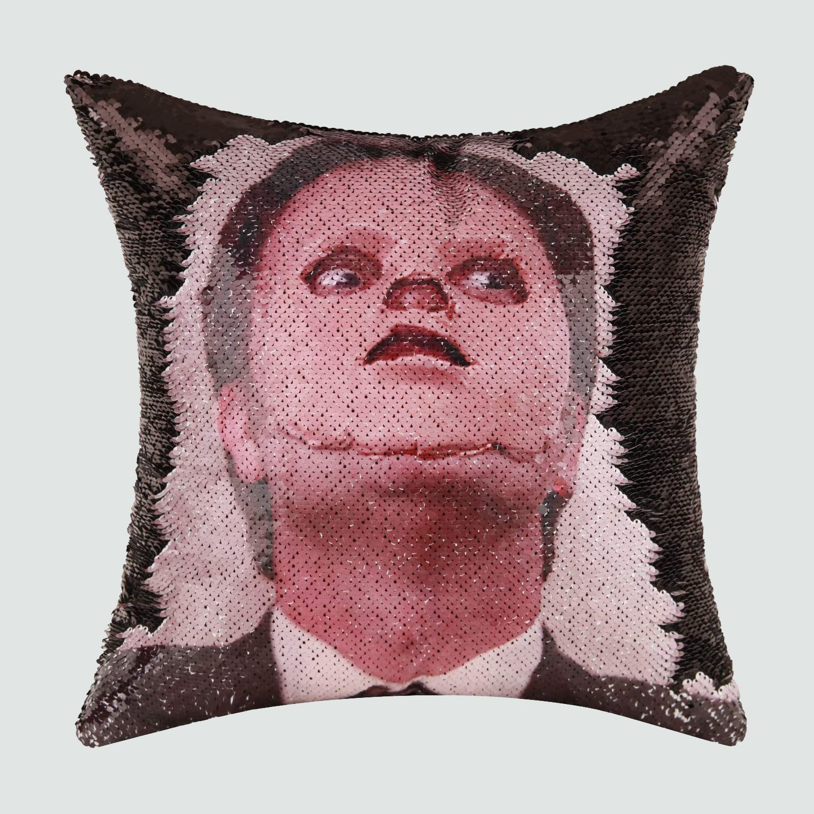 Dwight Throw Pillow