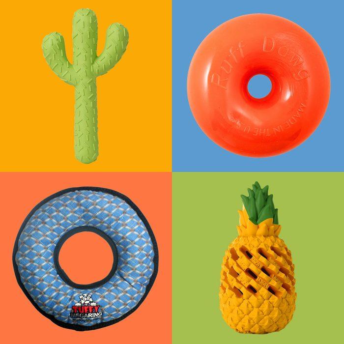 Indestructible Dog Toys on Colorblock background