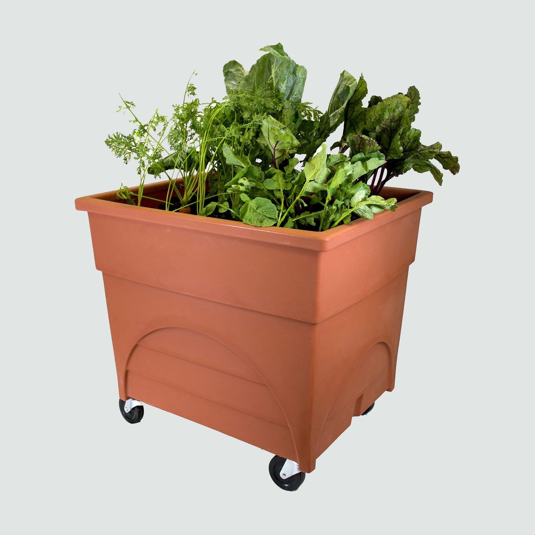 Emsco Group Root Vegetable Raised Bed Grow Box