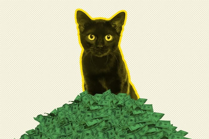 Black cats can be lucky