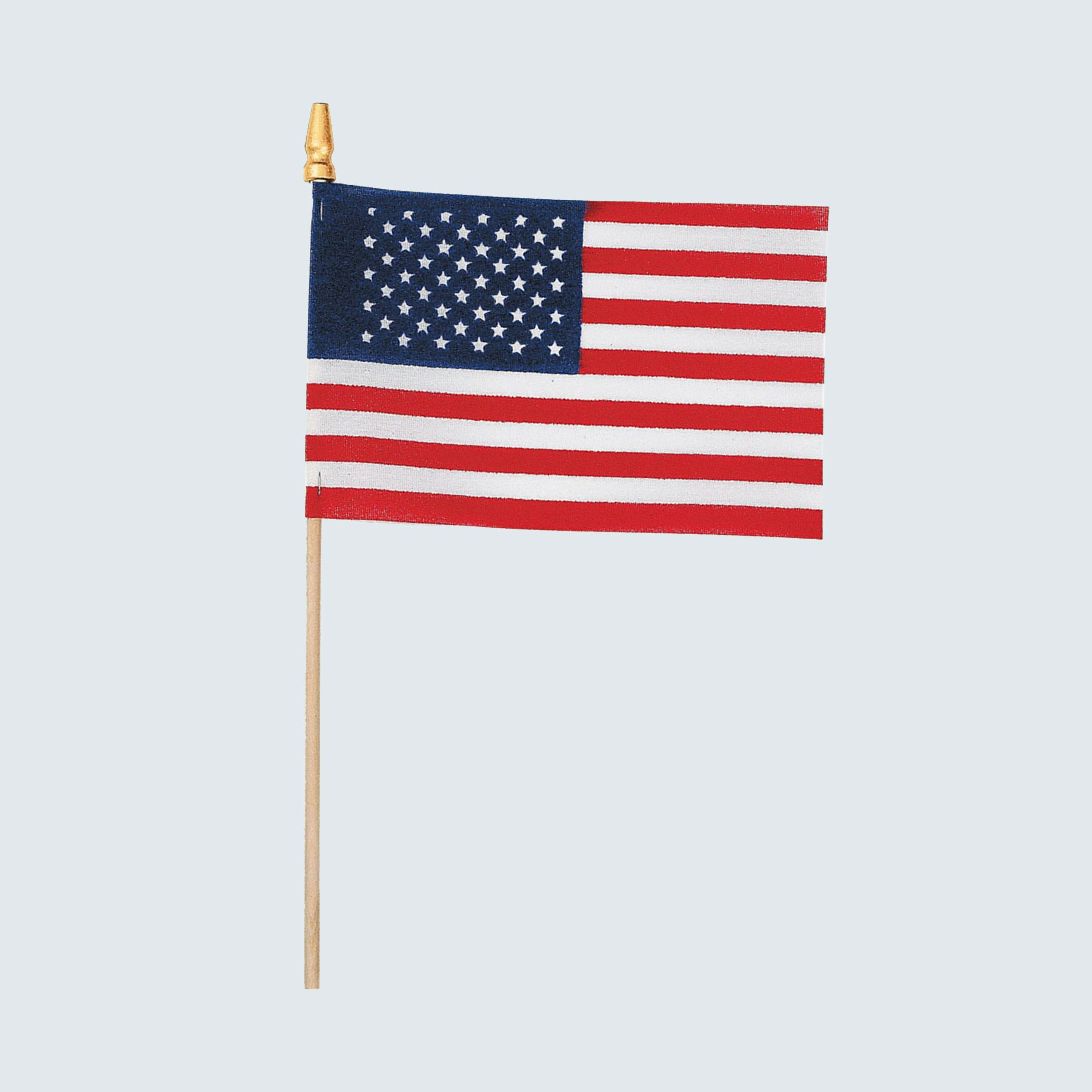 Oriental Trading Small Cloth American Flags