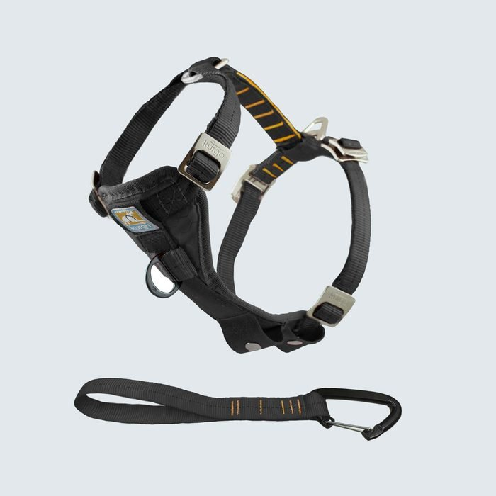 Kurgo Tru-Fit Smart Dog Car Harness
