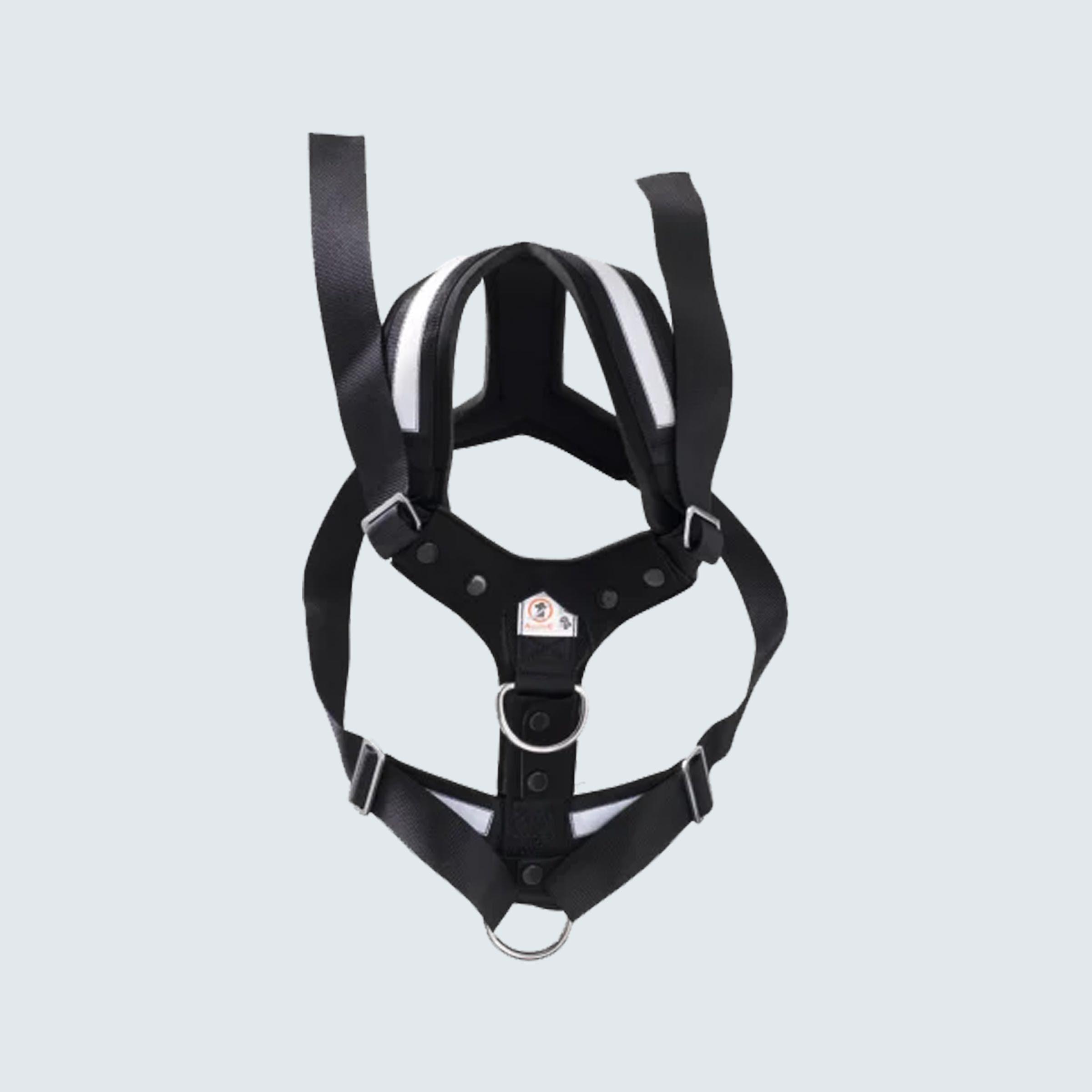 4X4 North America AllSafe Dog Harness