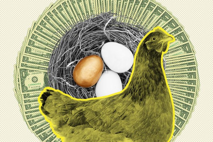 A chicken with a nest egg