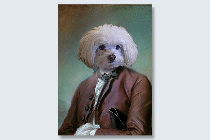 ambassador pup dogeface pet portrait