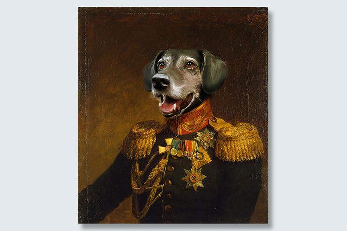medals for treats dogeface pet portrait