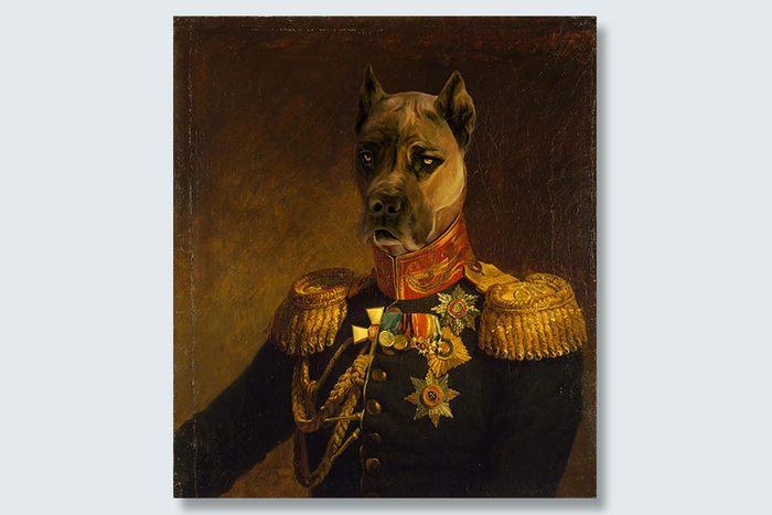 tough general dogeface pet portrait