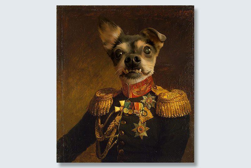 best smile dogeface pet portrait