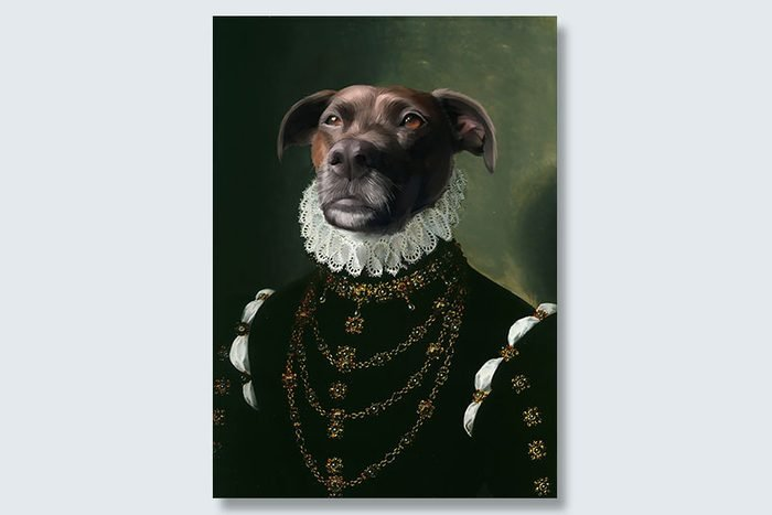 the dame dogeface pet portrait