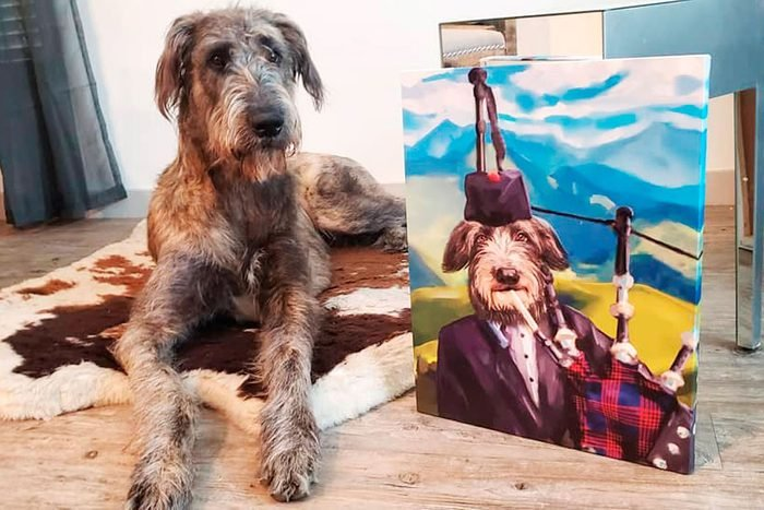 dog sits next to his dogeface portrait