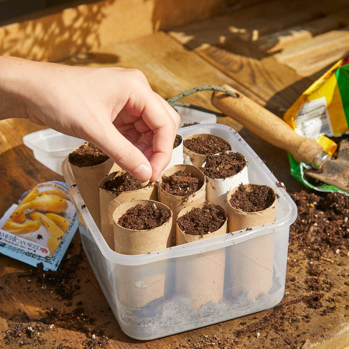 HH Handy Hint Plant seeds in toilet paper tubes