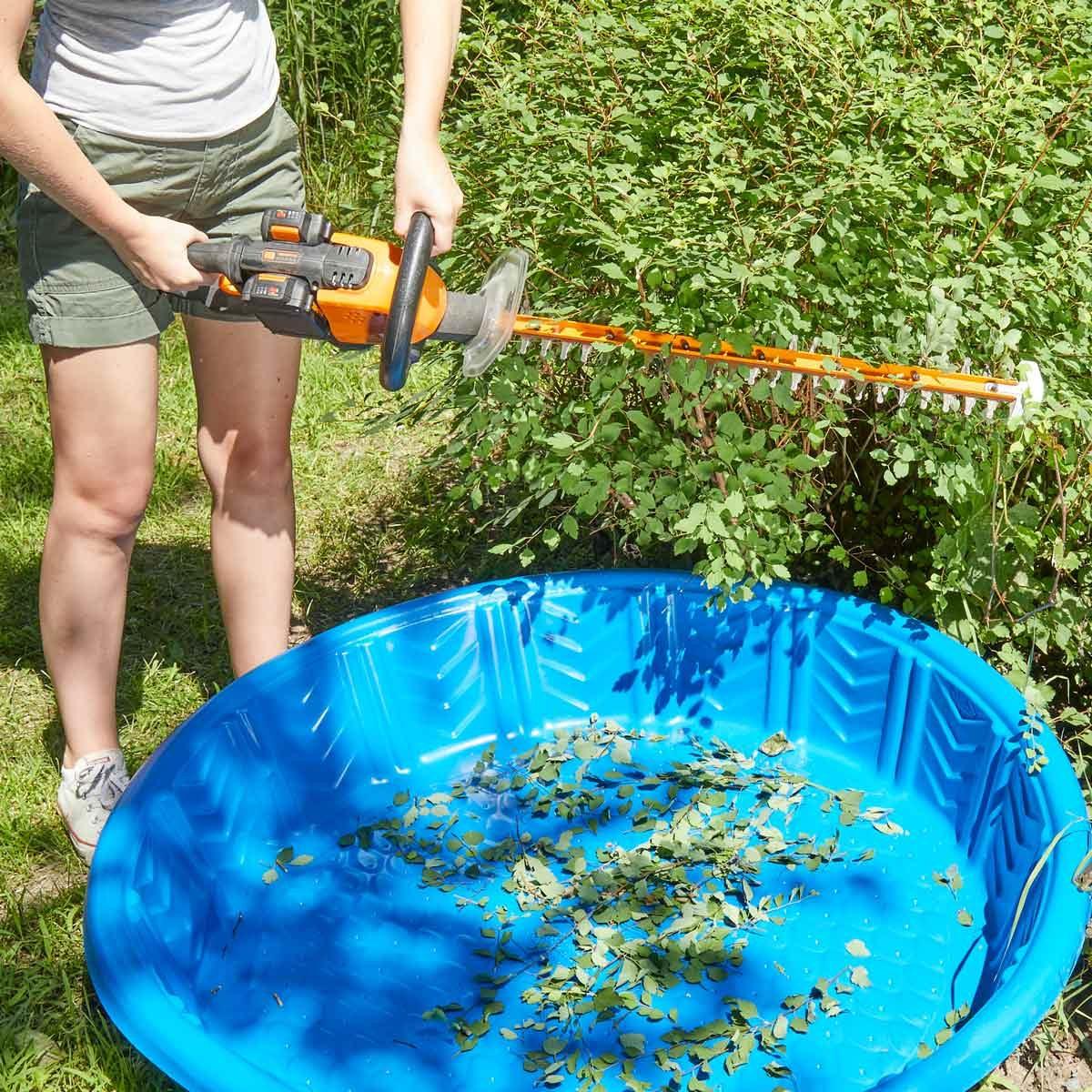 HH kiddie pool bush clippings