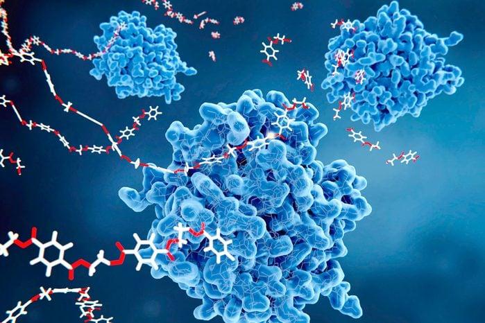 PETase enzymes breaking down plastic, illustration