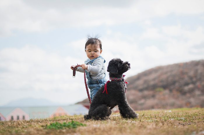 Baby trying to walk dog in the park