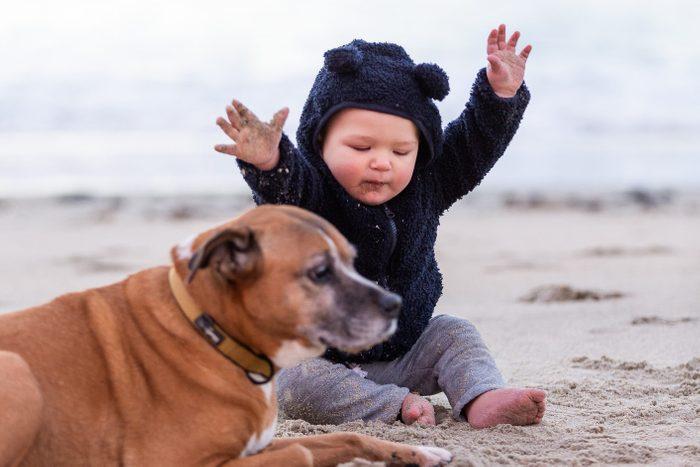 Dog and Baby on Beach