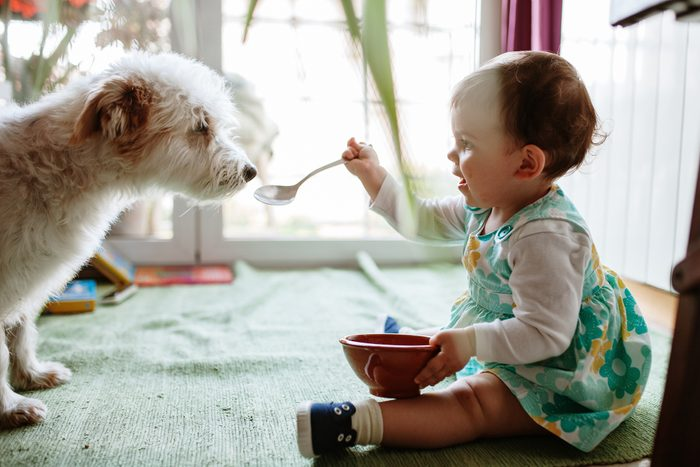 Side View Of Girl Feeding Dog At Home