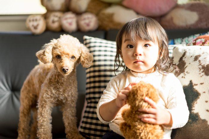 Children, stuffed animals, pets (dogs)