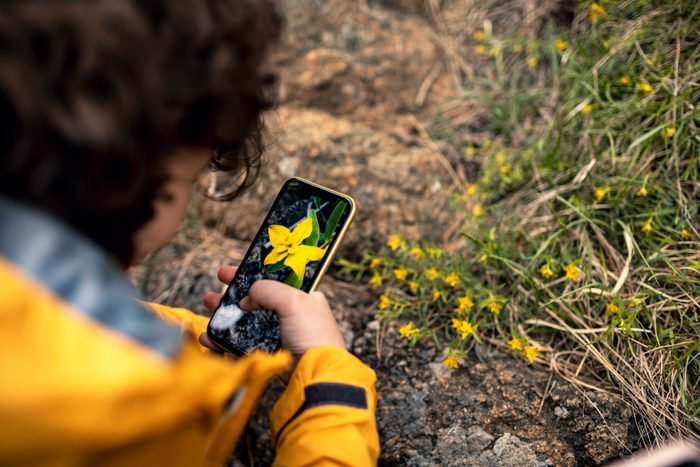 Little boy taking pictures of flowers