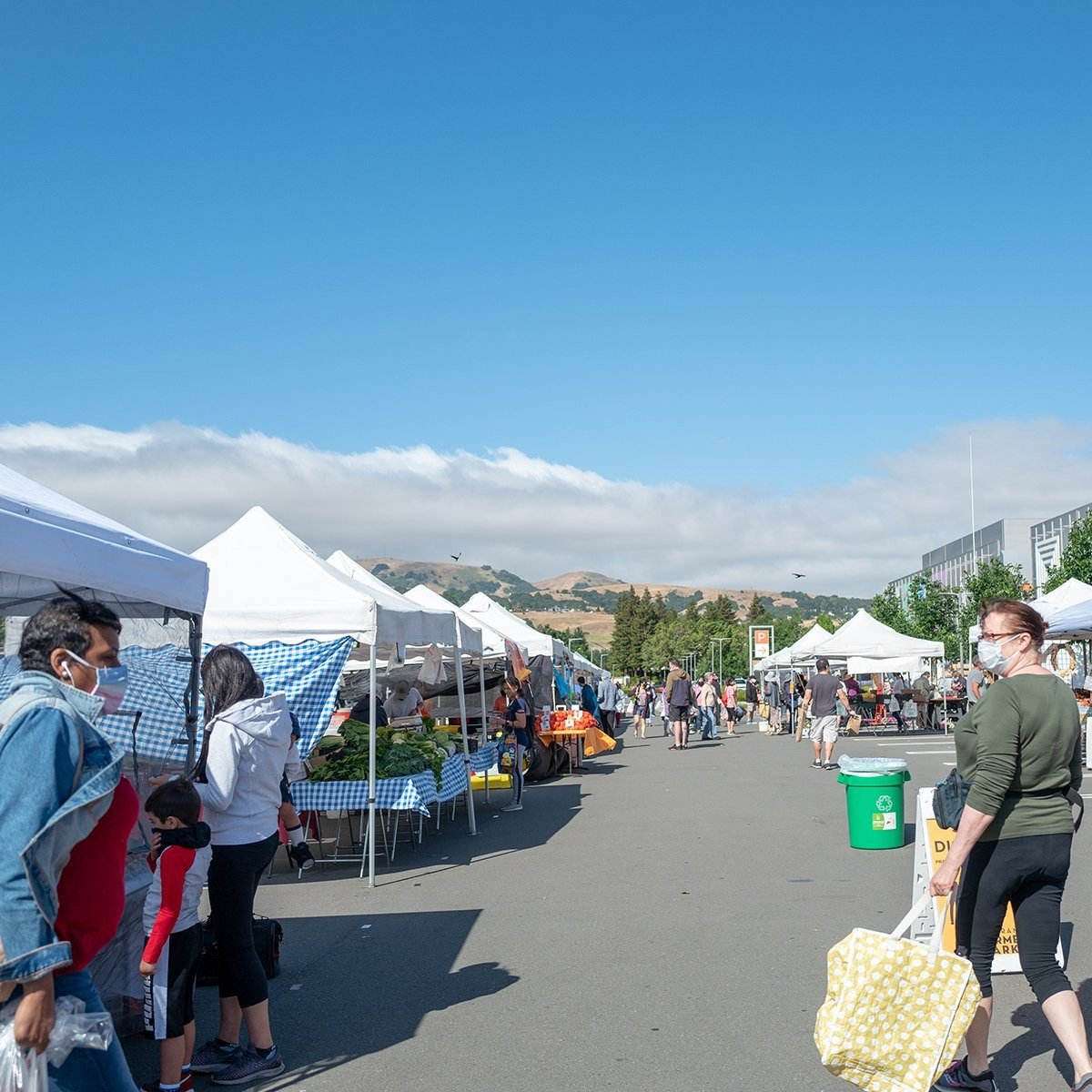 People browse through stalls at the San Ramon Farmer's Market, a California Certified Farmer's Market, San Ramon, California, June 6, 2020. (Photo by Smith Collection/Gado/Getty Images)