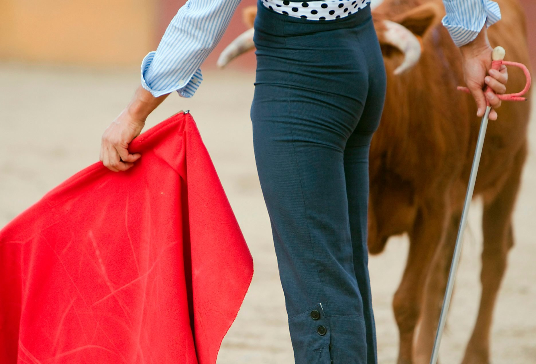 The Spanish bullfighter