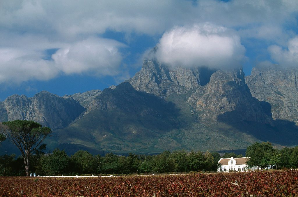 South Africa - Wine Route
