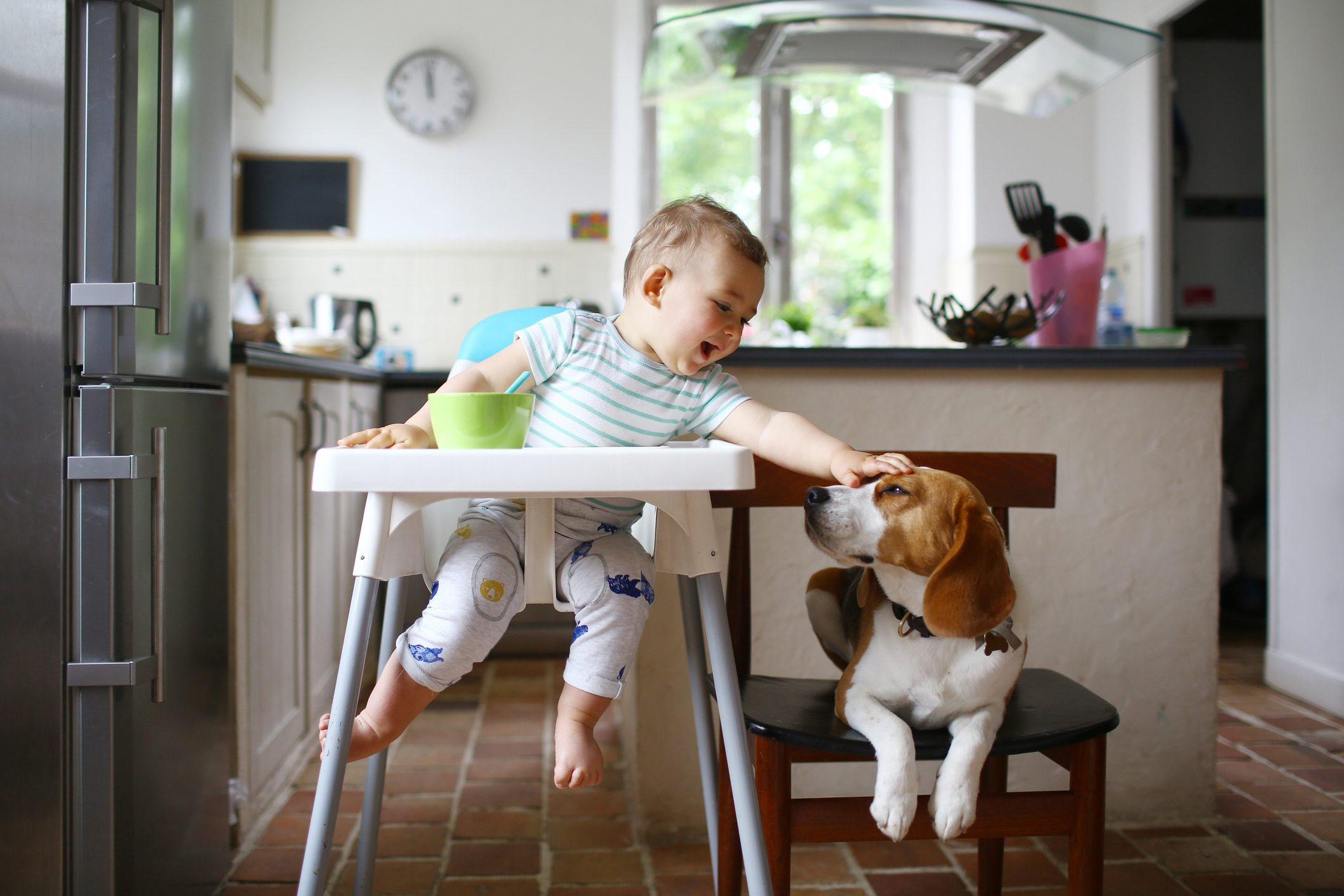 A 1 year old boy petting his dog in the kitchen