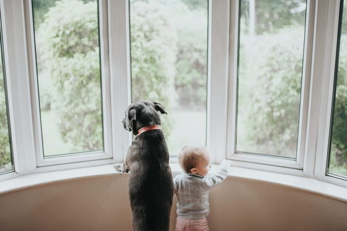 Dog and Baby staring out a large window