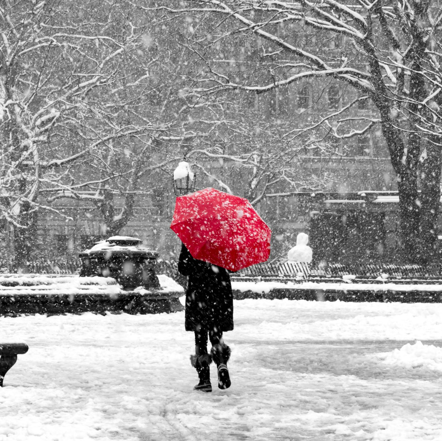 Woman with red umbrella in black and white snowstorm, New York City